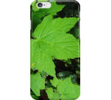 Salmon Berry Leaves iPhone Case/Skin