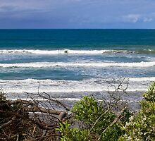 Ocean View by Sandra Chung