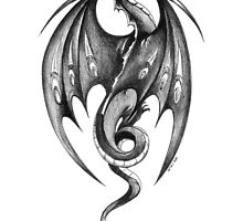 Ink Dragon by Heidi Schwandt Garner