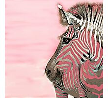 Zebra Pink and White Abstract Photographic Print