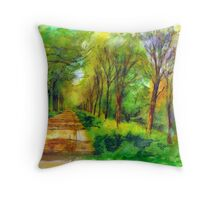 Sun at the countrydike in Zeeland Throw Pillow
