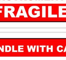 Handle With Care Delicate Musical Instruments Fragile Sticker