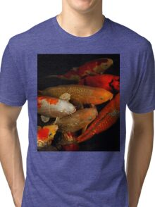 Koi Fish Group Tri-blend T-Shirt