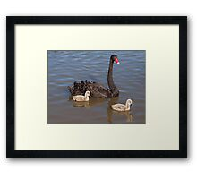 And Then There Were Two! Framed Print