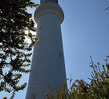 Spider Web - Aireys Inlet Lighthouse by forgantly