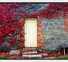 Autumn's Delight - Beechworth VIC by Chris Munn