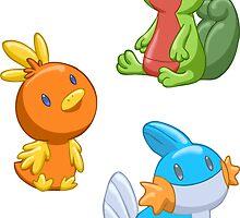 Pokemon Starters - Gen 3 by TipsyKipsy
