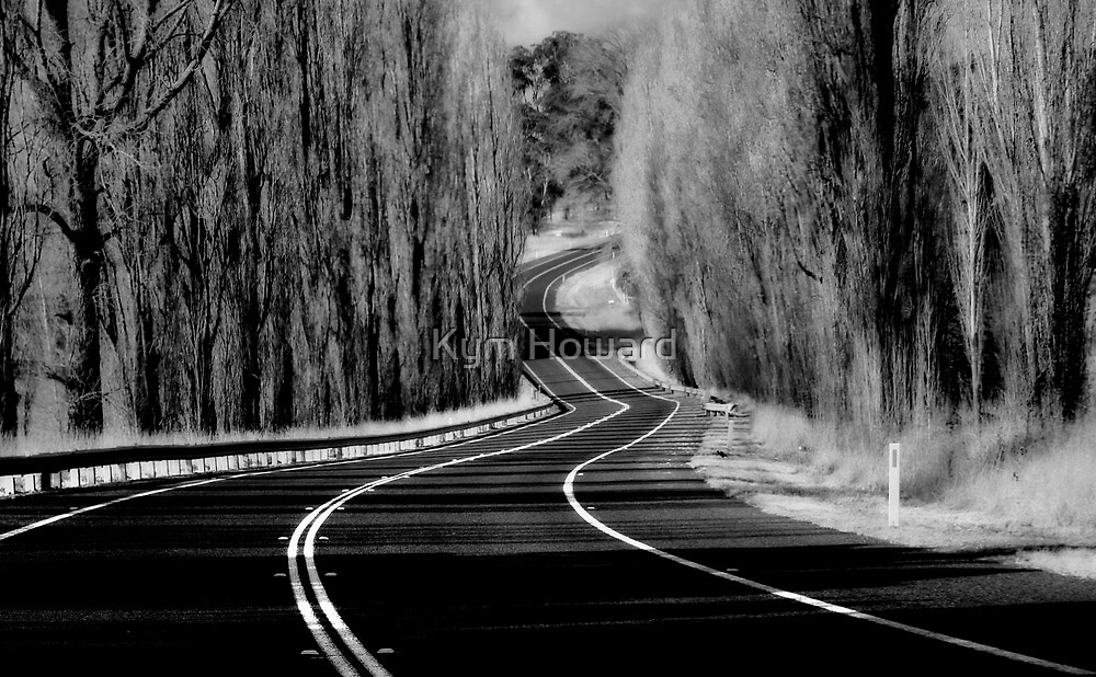The Winding Road by Kym Howard