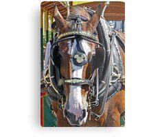 Disney Horse Metal Print