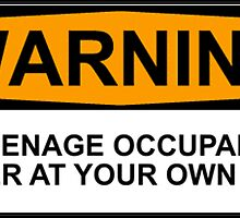 WARNING: TEENAGE OCCUPANT, ENTER AT YOUR OWN RISK by Bundjum
