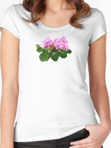 Pink and White Striped Geraniums Women's Fitted Scoop T-Shirt