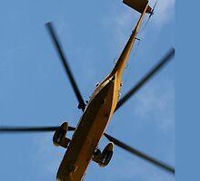 RAF Seaking by TransientDesign