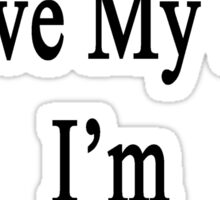 Why Wouldn't I Love My Job? I'm A Carpenter  Sticker