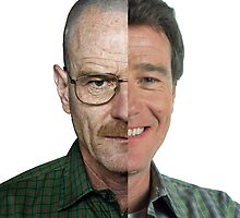Malcom in the Middle Vs Breaking Bad by salodelyma