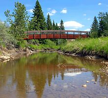 Bridge over Whitemud Creek by Jim Sauchyn