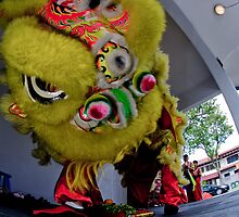 chinese lion dance by paulcowell