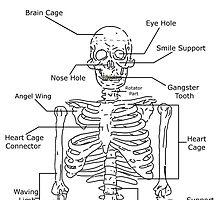 El Esqueleto by RogerRodger