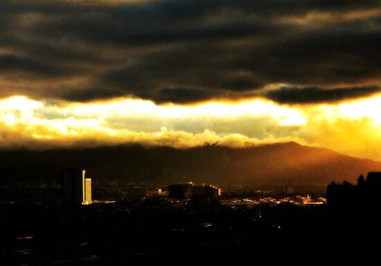 velvet morning by shutterbug261