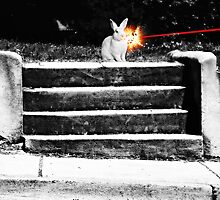 She killed the bunny with her laser vision by Scott Mitchell