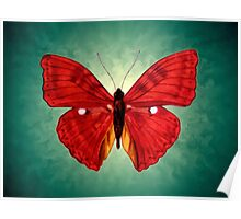 red Butterfly acrylic painting Poster