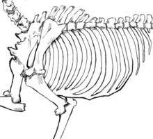 Horse Skeleton Sticker Sticker