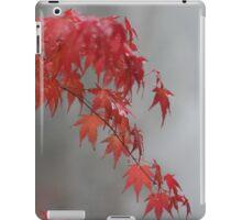 Autumn maple iPad Case/Skin