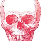 Vintage Ombre Skull Etching by Pip Gerard