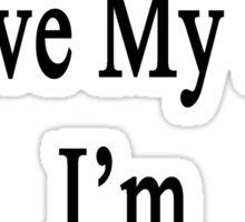 Why Wouldn't I Love My Job? I'm A Violinist  Sticker