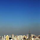 São Paulo by Yuval Fogelson