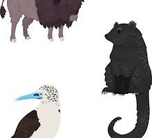 B is for... Animals by Claire Stamper