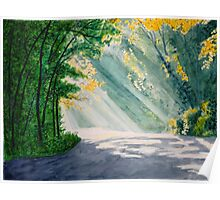 Streaming Sunshine on a Curve in the Road Poster