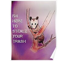 I'm Here To Stealz Your Trash, Possum Poster