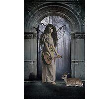Troubadour Photographic Print