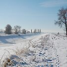 Winter Canal (2) by Nicole  Markmann Nelson