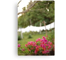the hotel towels Canvas Print