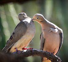 True Love by Saija  Lehtonen