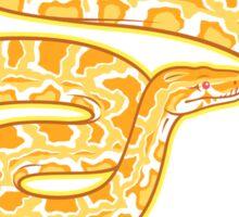 Burmese Python (Albino) Sticker