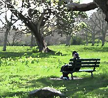 Spring in the Park by Wendi Donaldson Laird