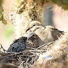 Motherly Love  by Saija  Lehtonen