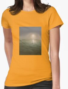 Seagulls in the mist Womens Fitted T-Shirt