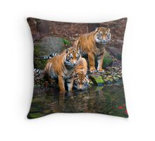 Fancy Some Fish? Throw Pillow