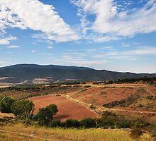 View after Cirauqui by Hilda Rytteke