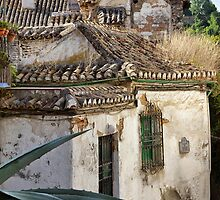 Spanish Living... Granada Spain by Ali Brown