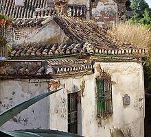 Spanish Living... Granada Spain by Ali Brown