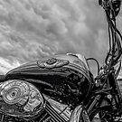 Harley Days by peter donnan