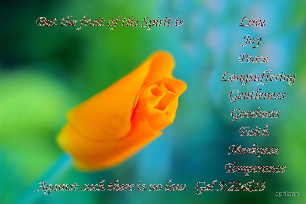 The Fruit Of the Spirit by aprilann