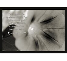 I Will Praise the Lord.. Photographic Print
