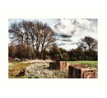 Rural Views - Autumn Art Print