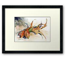 Isadora Framed Print