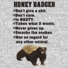 Honey badger don't give a shit by nadil